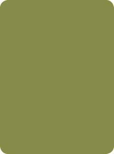 9745f536c88c9e HPL Collection Colours Verde Oliva 1852 - Abet Laminati US